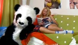 Big panda toy slams his kielbasa into nice pussy of a hot young bombshell
